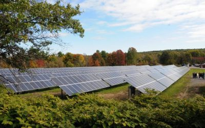 Renewable Energy's Role in the COVID-19 Economic Recovery